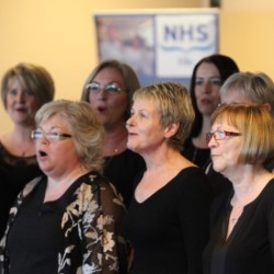REVIEW: Healthy Harmonies in Concert